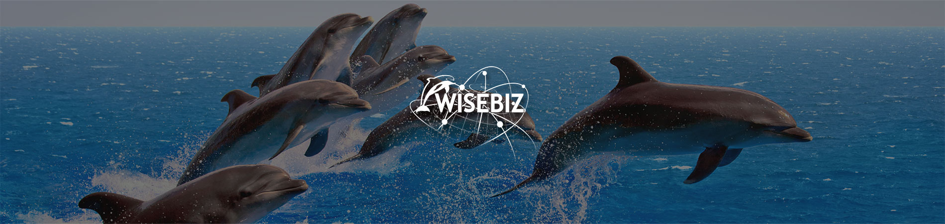 Approach_WiseBiz_Header_1900