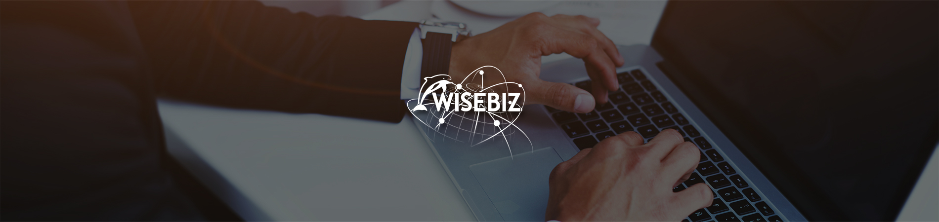 System-Development_WiseBiz_Header_1900